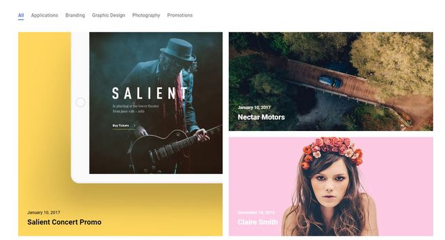 The Themeforest Salient theme