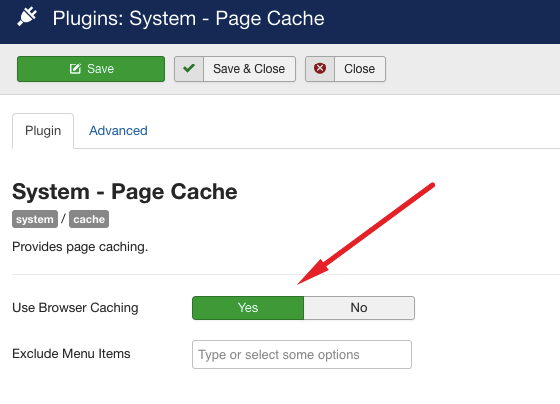 enable browser cache joomla system plugin